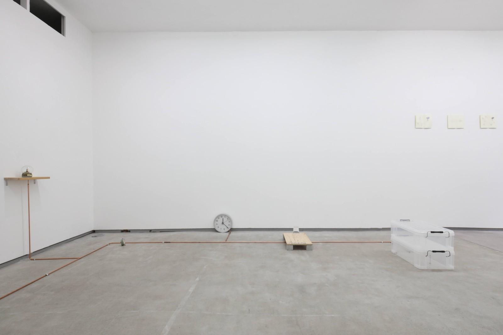 「いくつかのこと」展示風景 2020 撮影|前谷開